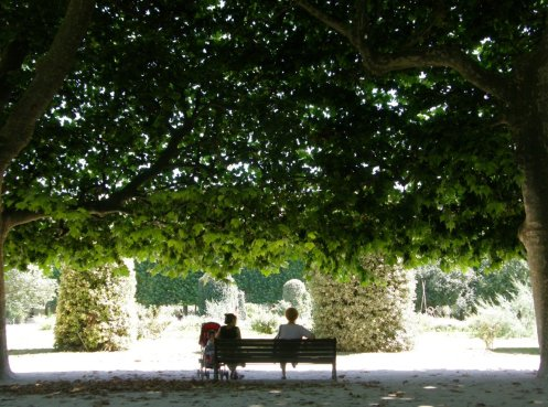 paris-puisto