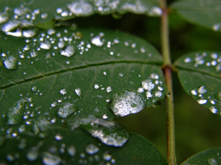 Sateen jäljet