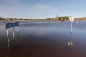 Hirvijoki Jalasjärvi