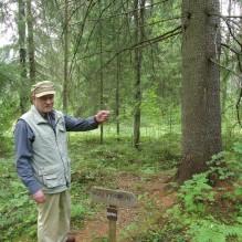 Harri Tapper haltiapuulla