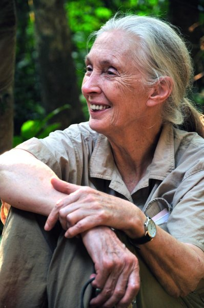 Jane Goodall. Kuva: JGI, Chase Pickering