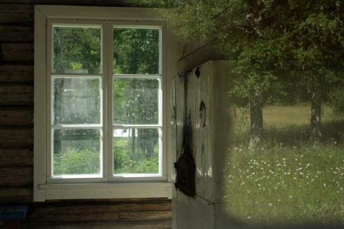 ikkuna luontoon