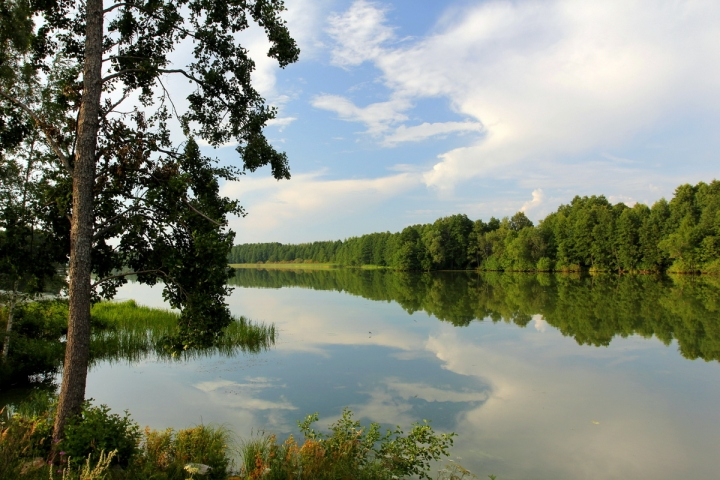 Köyliönjärvi